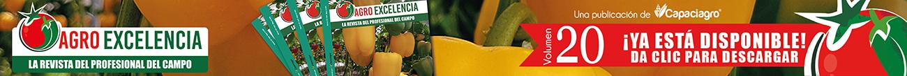 http://agroexcelencia.com/wp-content/uploads/2018/04/Slide-anuncio154.png