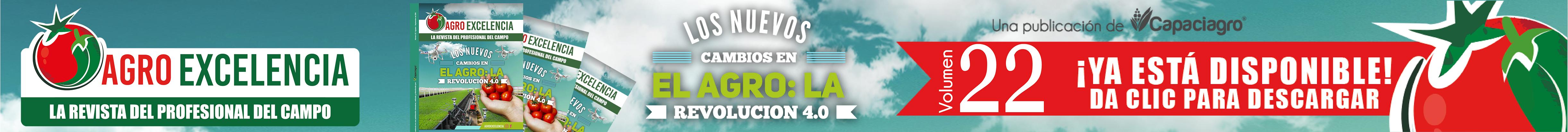 http://agroexcelencia.com/wp-content/uploads/2018/08/Slide-anuncio22.png