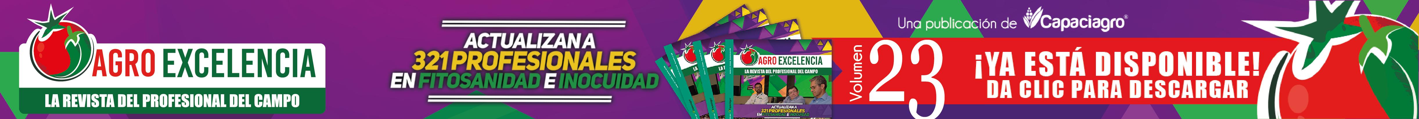 http://agroexcelencia.com/wp-content/uploads/2018/10/Slide-anuncio_23.png