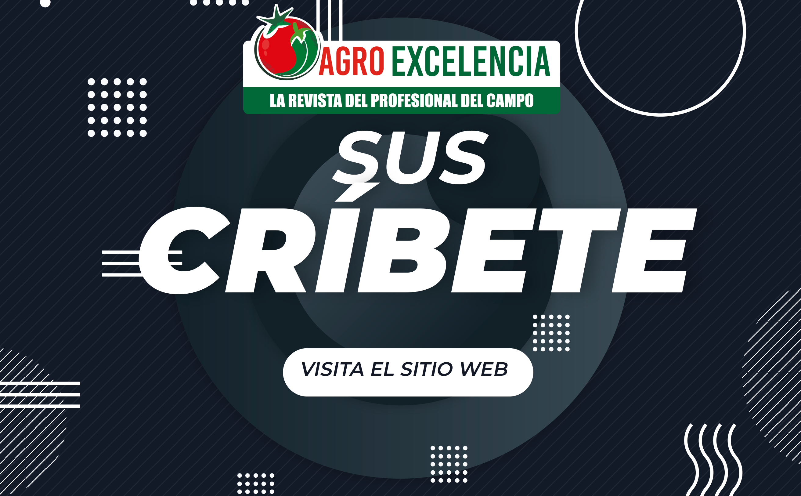 https://agroexcelencia.com/wp-content/uploads/2020/04/1-2.png