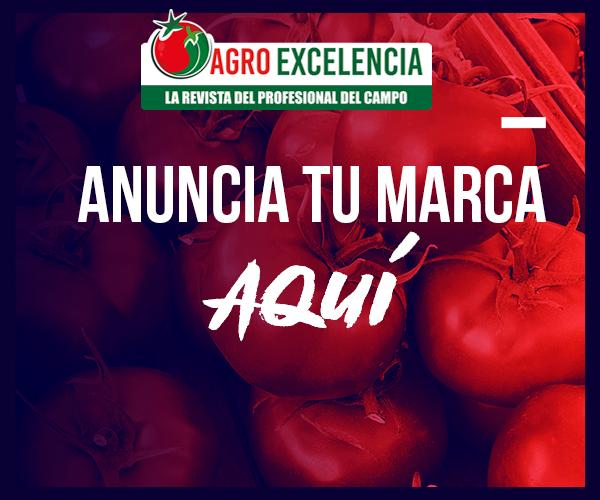 https://agroexcelencia.com/wp-content/uploads/2020/04/ANUNCIO-ADS2.png