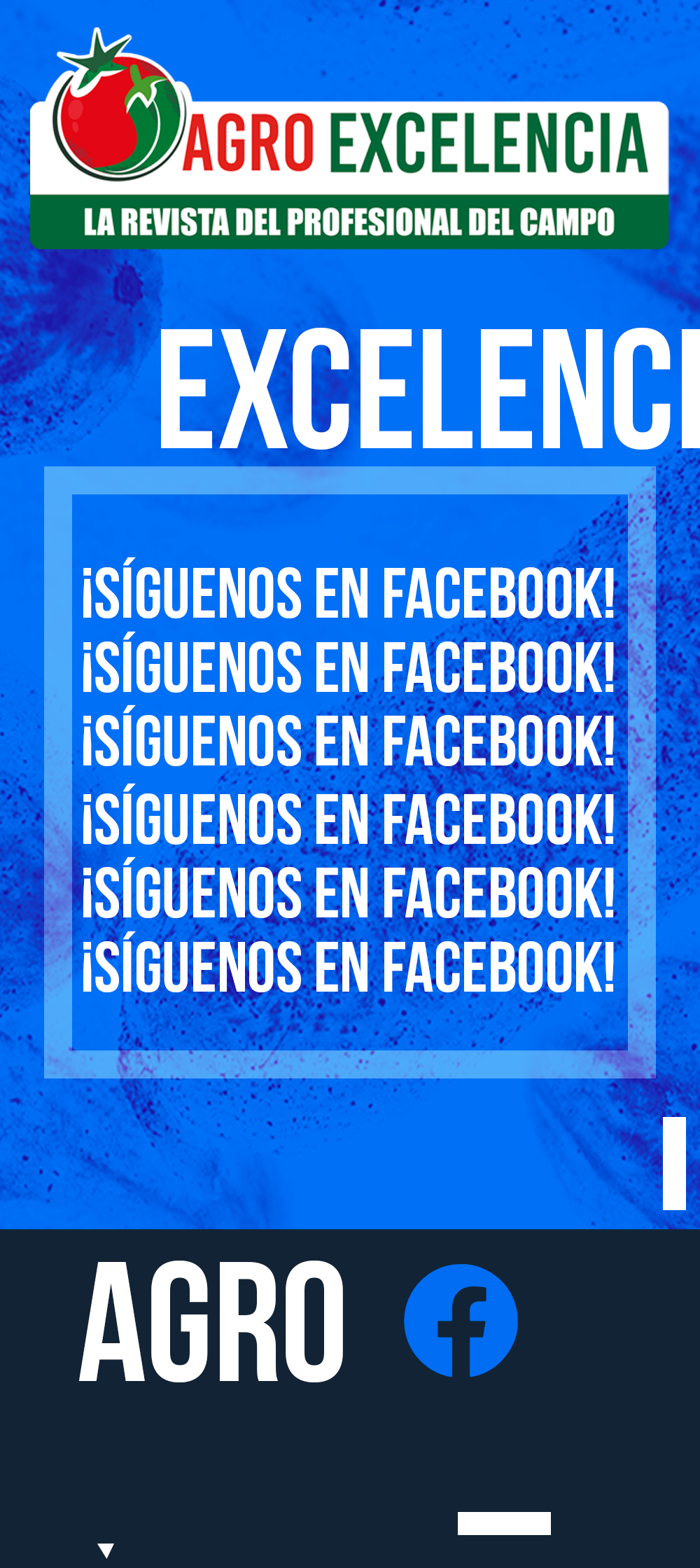 https://agroexcelencia.com/wp-content/uploads/2020/04/POST-14.png