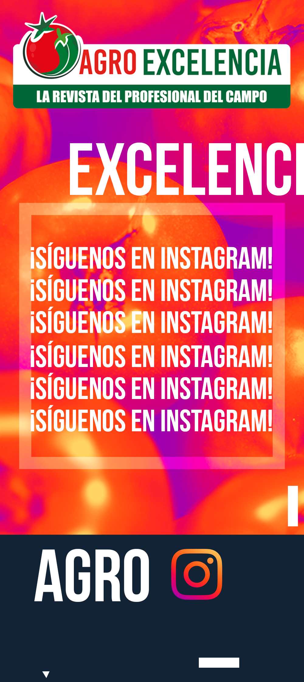 https://agroexcelencia.com/wp-content/uploads/2020/04/POST-15.png