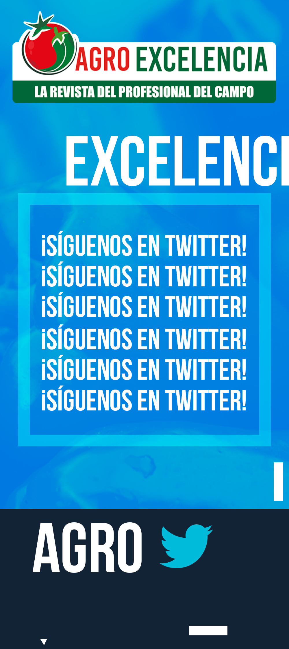 https://agroexcelencia.com/wp-content/uploads/2020/04/POST-16.png