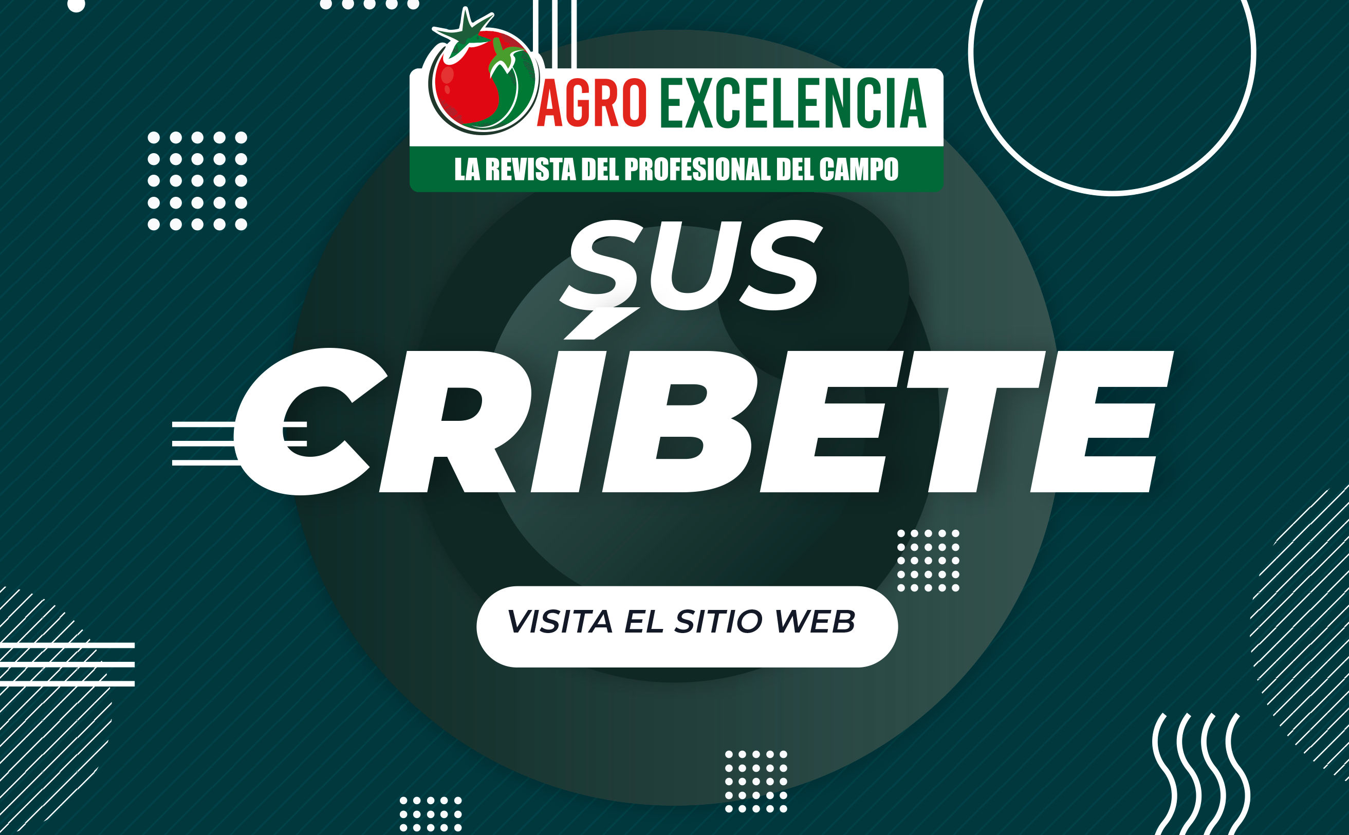 https://agroexcelencia.com/wp-content/uploads/2020/08/1-1.png
