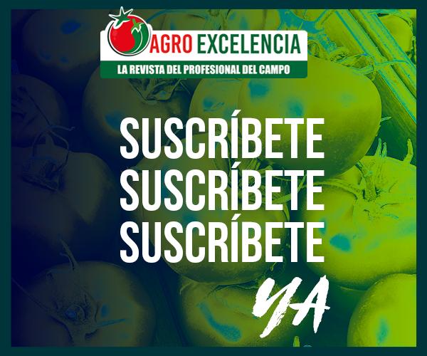 https://agroexcelencia.com/wp-content/uploads/2020/08/ANUNCIO-ADS3.png
